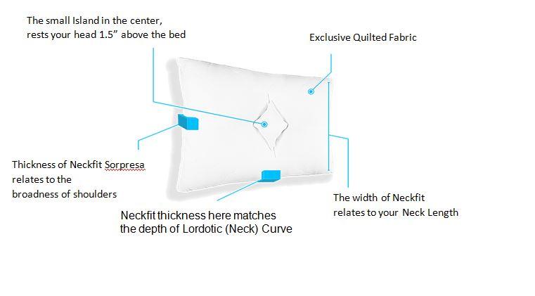 Best Cervical Pillow